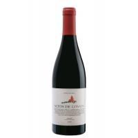 ALTOS DE LOSADA 2009 75 CL